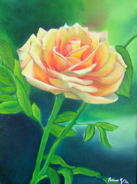 """A Rose by any other name  12"""" x 16"""" - Oil on canvas - Sold"""